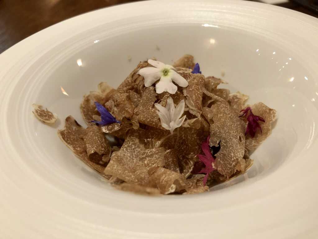 Blue Fin Tuna  | Yuzu | Sesam | Wachteleigelb | Weisser Trüffel