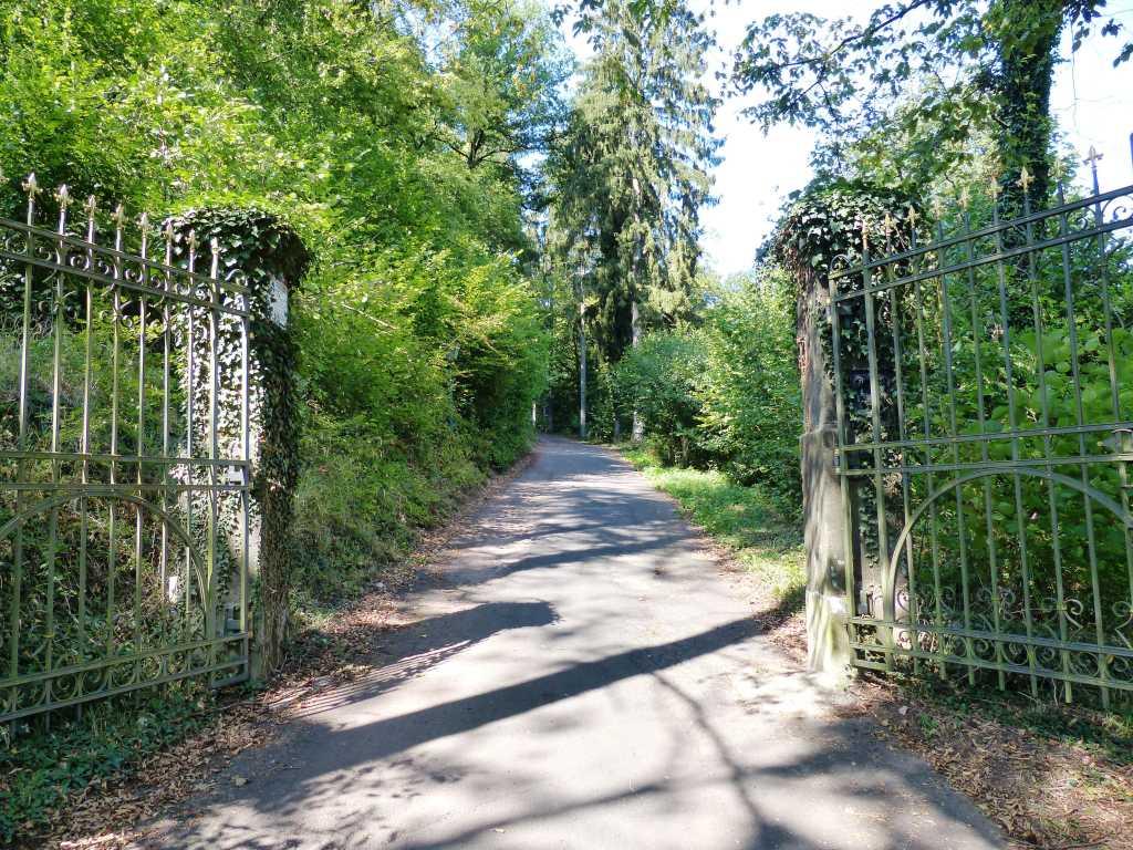 Aufgang / Auffahrt zur Burg