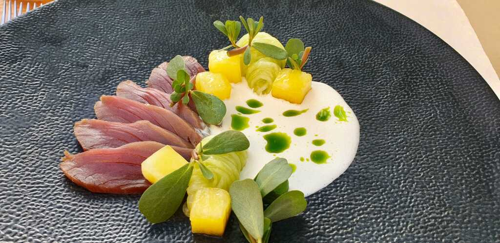 """Sashimi vom """"kleinen Thunfisch"""", Wassermelone, Gurke, Buttermilch"""