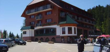 Bild von Berghotel Mummelsee
