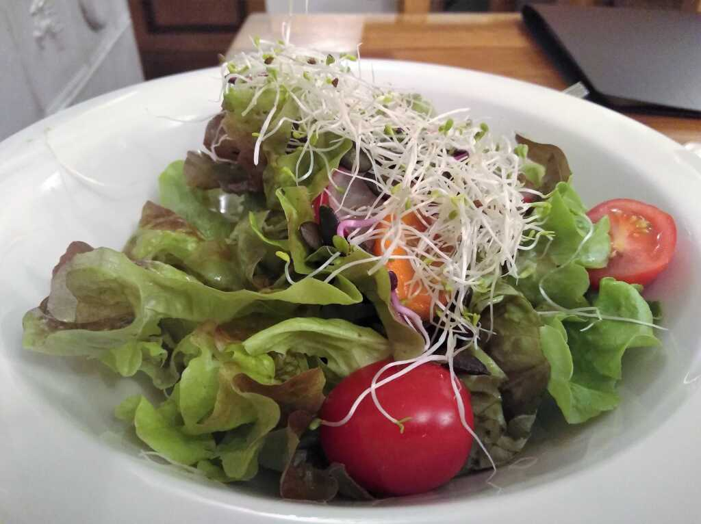 Kleiner Blattsalat mit Kräuterdressing