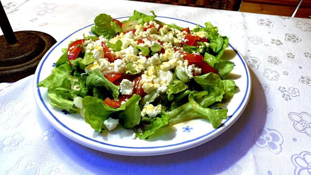 Salat aus der heimischen Küche