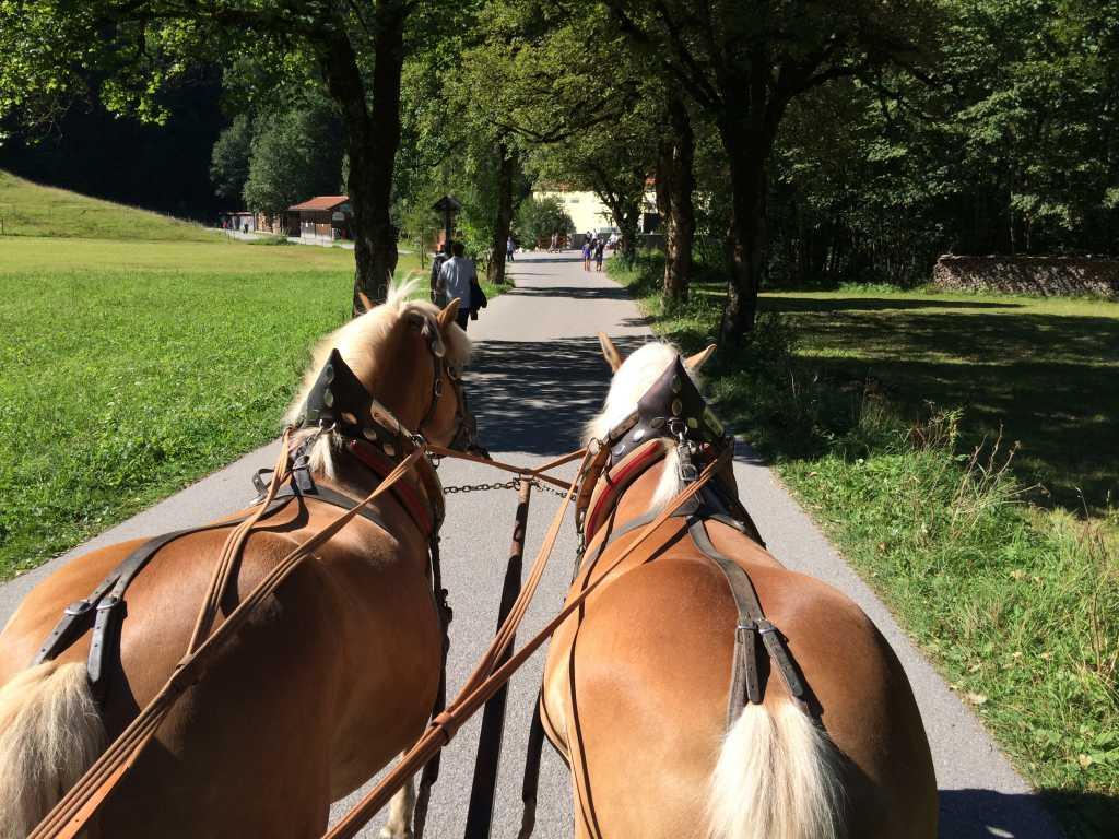 Kutschfahrt mit Dauerbeschallung von links