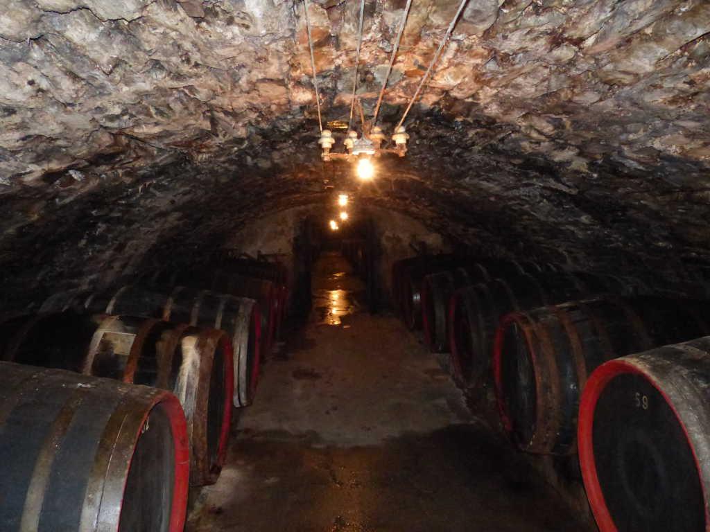 Gewölbe der Weinmanufaktur Dagernova