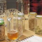 Foto zu Dellmann's Bräu: Einige Zutaten