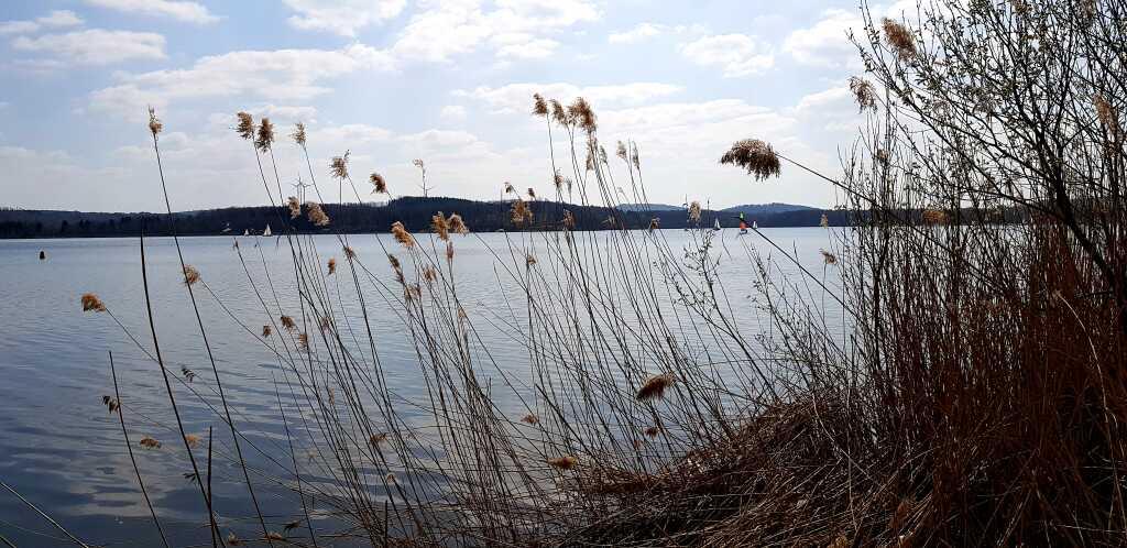 Bostalsee mit Blick zur Seezeitlodge
