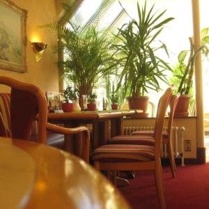 Bad Essen Neues Cafe