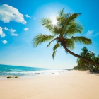 GastroGuide-User: Karibiksonne210